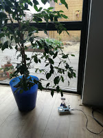 Solar harvest measurement by the window
